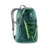 ssdd.zone-1574220517-ssdd.zone-1567678709-Gogo_2225_16-Forest-Kiwi_-_Copy.jpg